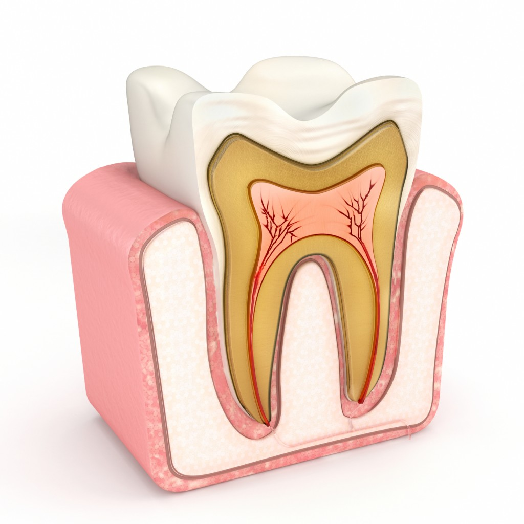 We have the best root canal therapy in Canberra.